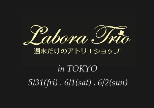 LaboraTrio in tokyo 2013GRY